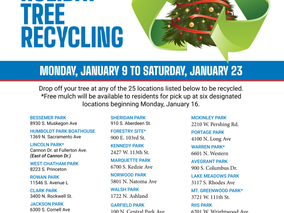 Recycle your Christmas Tree January 9th - 23rd