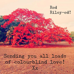 Red Riley-ed!