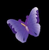 Butterflies signifies pregnancy los