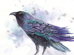Crow II.jpg