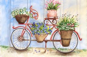 Bicycle Flower Baskets.jpg