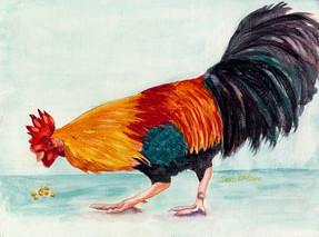 Rooster II.jpg
