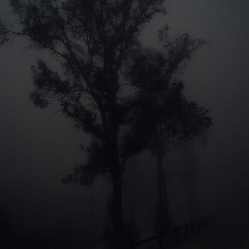 foggy simi morning 2