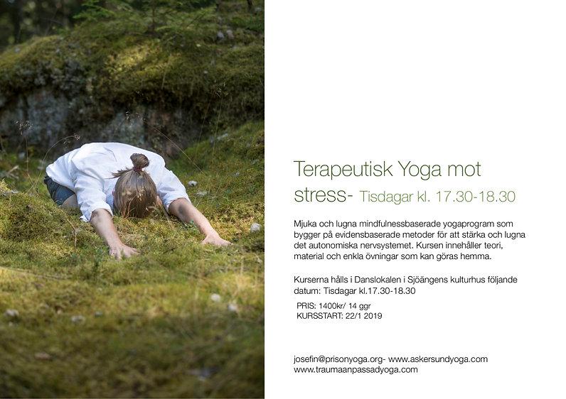 stress 19.jpg