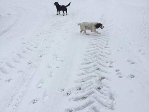 Snow n the village
