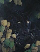 Bl_leopard1.jpg