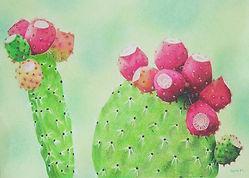 Fiona-cactus.jpg
