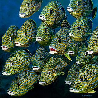 fish-wix.jpg