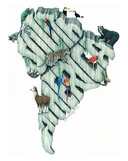 South America_small.jpg
