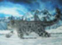 snowleopard-wix.jpg