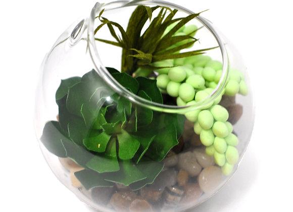 Kelly Green Succulent + Burrow's Tail Terrarium