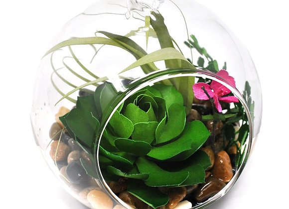 "Learn to Create a ""Succulent Terrarium"" Kit"