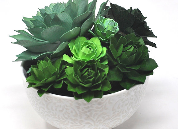 Intricate Lace Bowl Succulent Collection