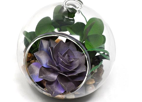 Purple Echevaria Succulent Terrarium