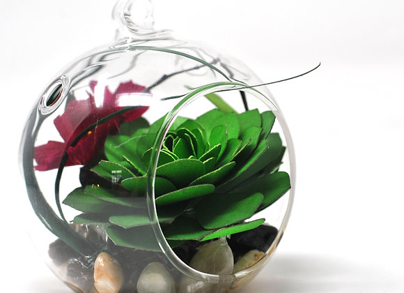 Mini Succulent Terrarium Ornament | Cherry Blossom Echevaria