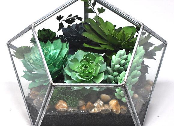 Diamond Glass Terrarium | Viola Collection