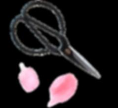 Bonsai Snips for creating