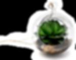 succulen terrarium ornament