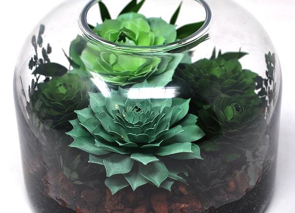 Large Dome Terrarium - Vibrant Green Succulent +Icanthus on Lava Rock Bed