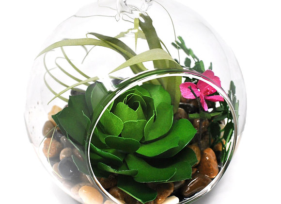 Green Succulent + Hot Pink Azalea Terrarium