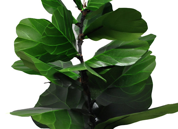 "Learn to create a ""Paper Fiddle Leaf Fig Plant"" Kit"