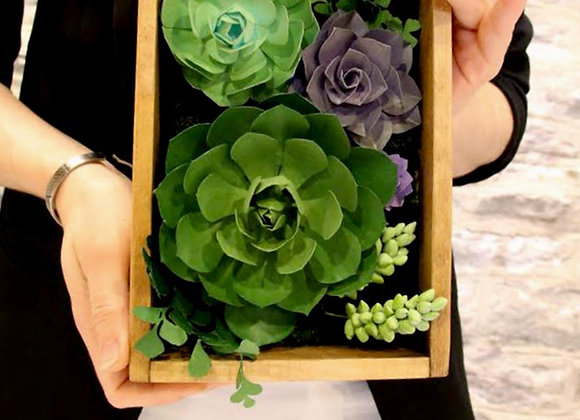"Learn to create a ""Succulent Wall Garden"" Kit"
