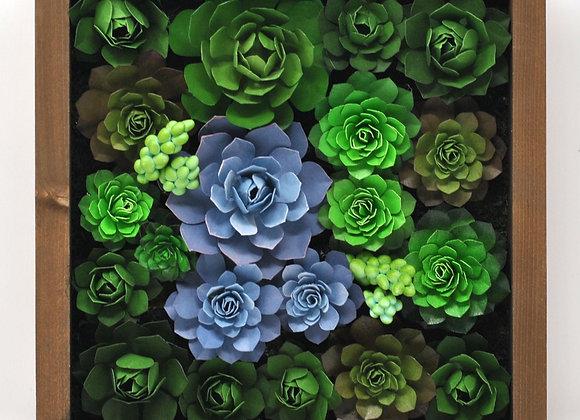 Medium Succulent Wall Garden | Gaia Collection