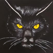 Michael Mason - Black cat
