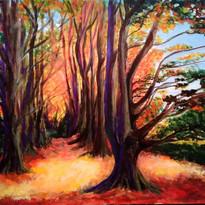 Melody Pryce - Autumn Blaze