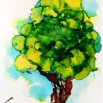 Teresa Wilson - Tree