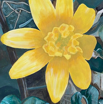 Vanessa Neal - Daffodil - Acrylic