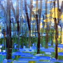Stephen Tucker - Bluebell woods