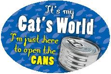 It's my cat's world