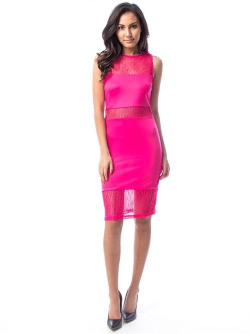Fuschia Mesh Dress