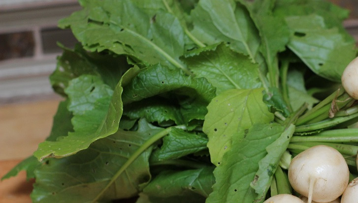 Eat your radish greens