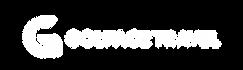 球人團logo-04.png