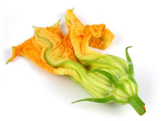 Un fiore di zucca non ancora appassito