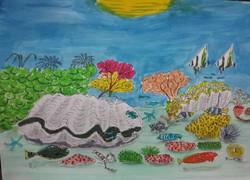 Great Barrier Reef snapshot