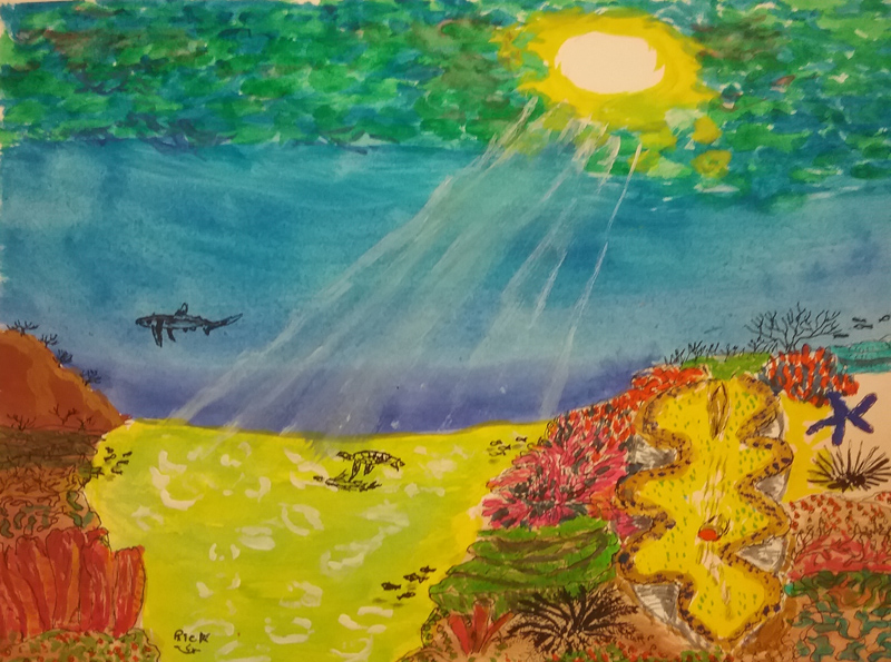Sunlight beams on a reef