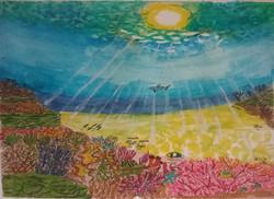 'sunbeams on a reef 2
