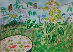 Aquarium_garden, A3