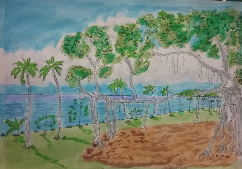 Nelly_Bay_foreshore_and_banyan_tree[1]
