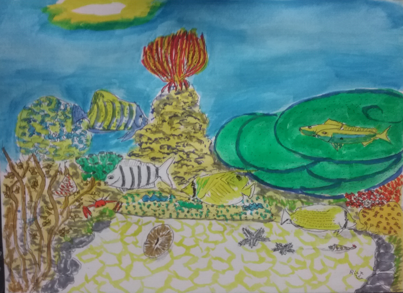 Coral reef scence 28.3.21