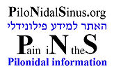 pilonidalsinus.org