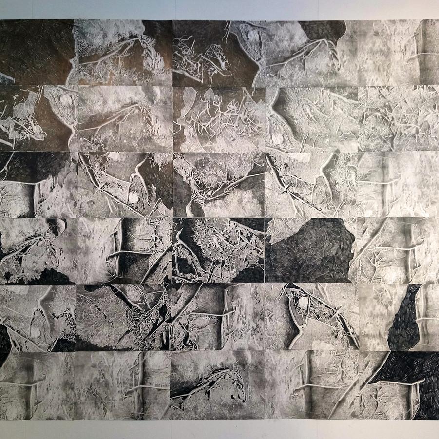 Tegning på risografi: format 200 x 180cm
