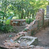 96_Plaine Saint-André_île de Mahe_Seyche