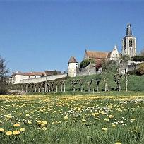 108_b_Remparts et tours_Bonny-sur-Loire_