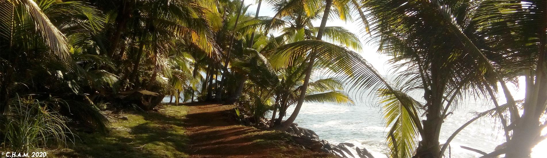 Bagne des Îles du Salut - Guyane
