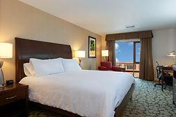 HiltonGardenInnBurlingtonKingRoom 2.jpg