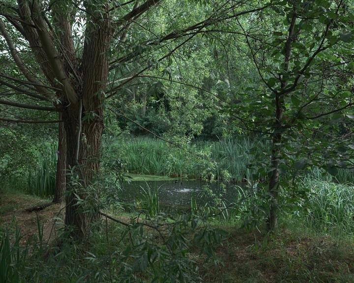 Tony Mak River Lea